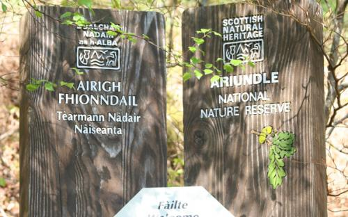 Ariundle National Nature Reserve