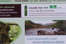 One of the interpretation boards in The Ariundle Oakwoods NNR