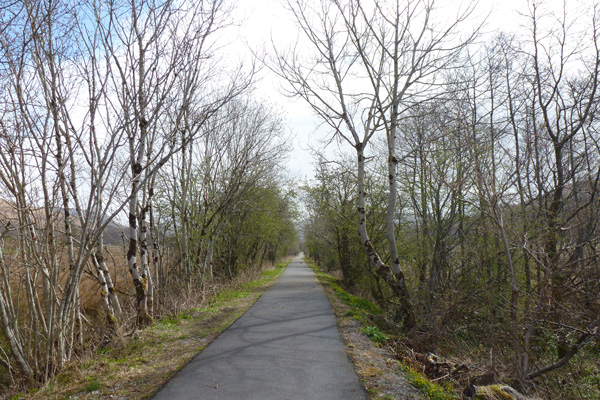 Section along the disused railway line