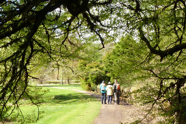 Taking in the tranquility and space of Ardtornish Gardens
