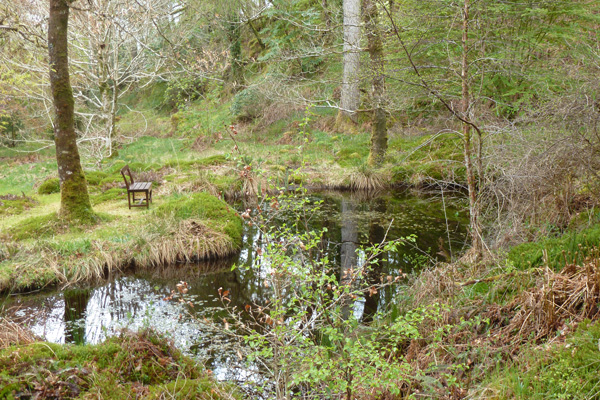 Mandy's Pool in Ardtornish Garden by Andrew's Wood