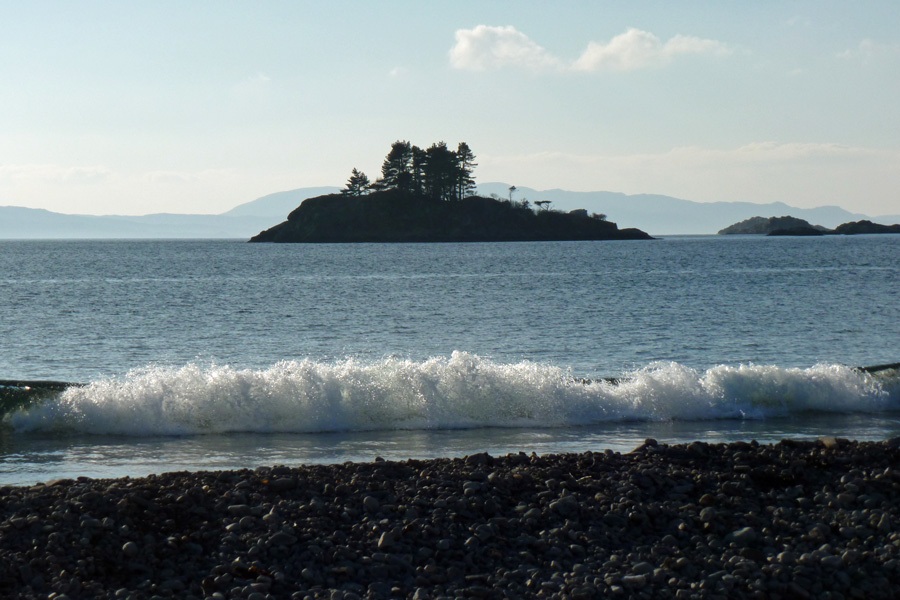 A view of Eilean nan Cabar from Borrodale Beach