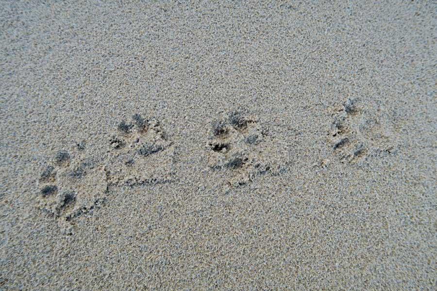 Cul na Croise Beach