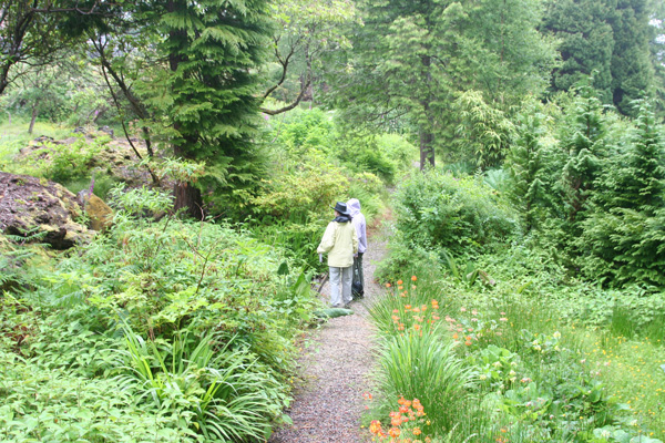 Gravel paths weave their way through Glenborrodale Castle Gardens