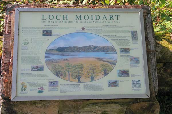 Loch Moidart - Willife Interpretation board