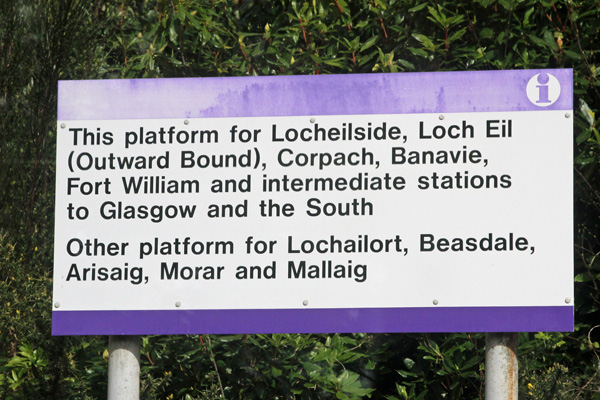 This platform for.......