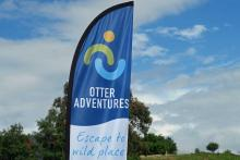 Otter Adventures