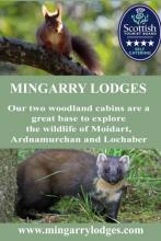 Mingarry Lodges - a great base to explore Ardnamurchan and Lochaber