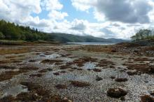 Loch Sunart at low tide at The Bay of Flies