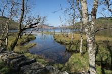Loch Arkaig to Invermallie Bothy
