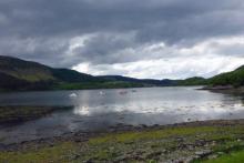 Loch Teacuis