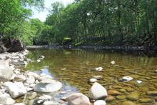 The River Spean