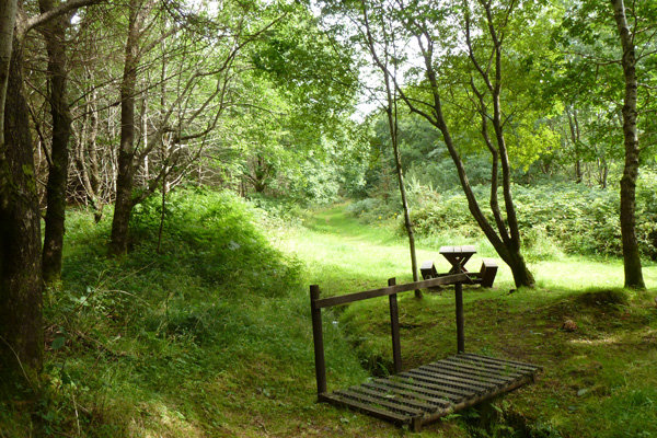 Picnic bench and bridge near the start of the walk