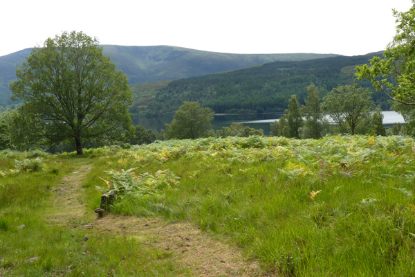 Grassy path back down the hill with fine views over Loch Arkaig