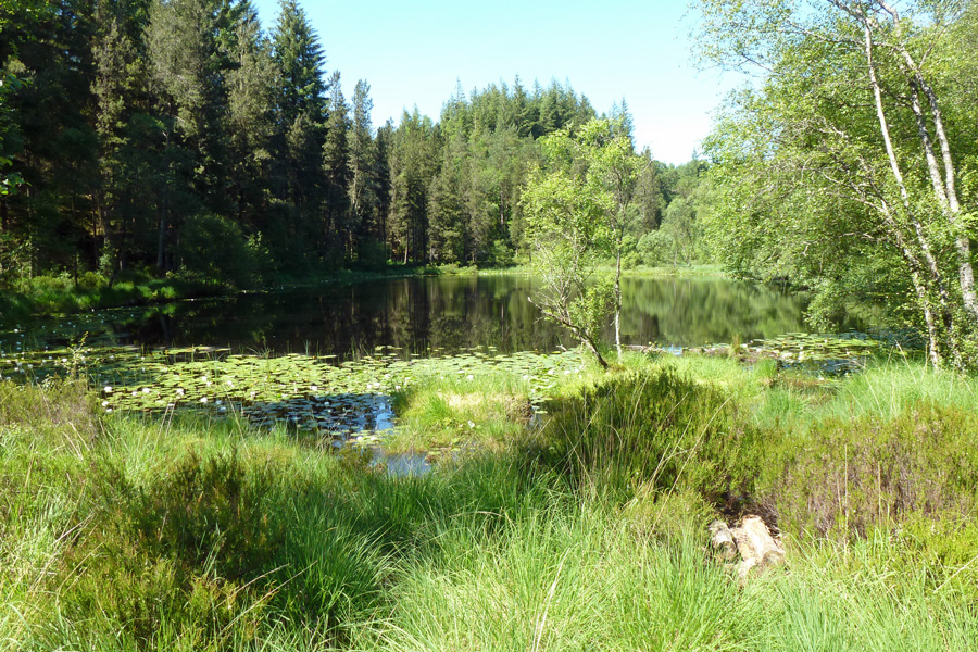 Lochan na Dunaich