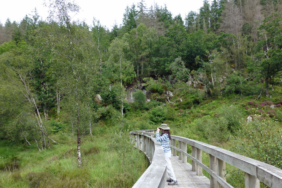 The walkway around the end of the Lochan