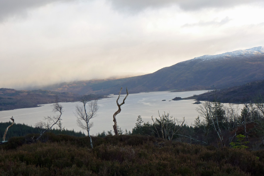 Looking east up Loch Sunart from the circular hill walk