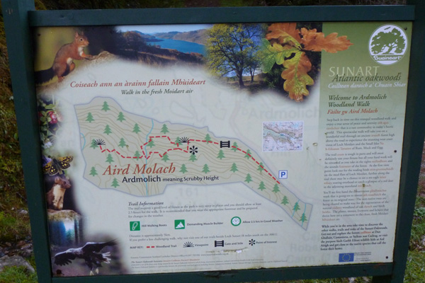 The interpretation board at the start of the Aird Molach walk