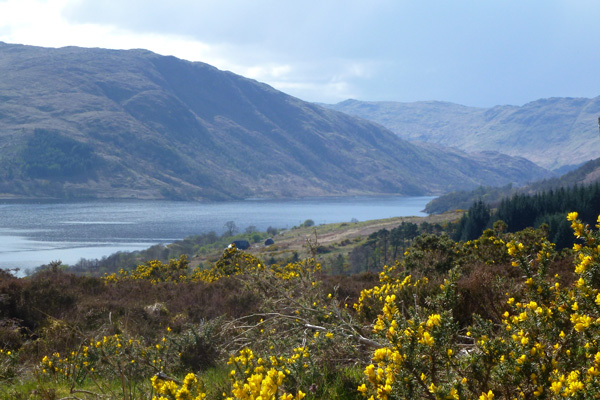 Looking down over Loch Sunart