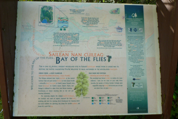 The interpretation board at The Bay of Flies