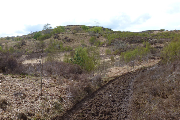 The path past Loch Dubh can be quite muddy