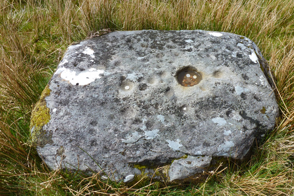 The cup marked stone