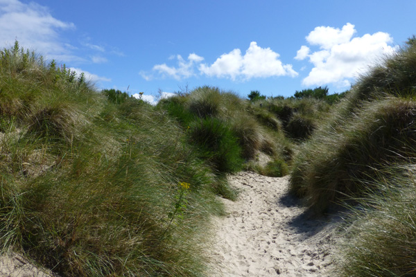 The sandy path from the car park to the beach