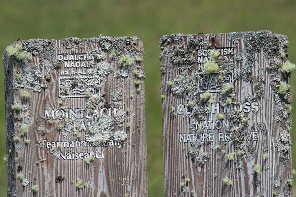 Lichens on the old Claish Moss NNR sign