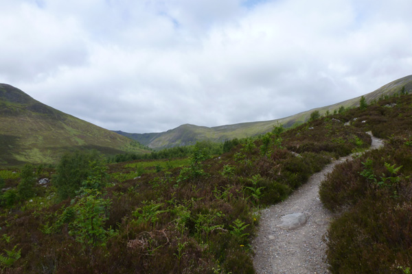 Climbing through heath on the Coire Ardair Trail