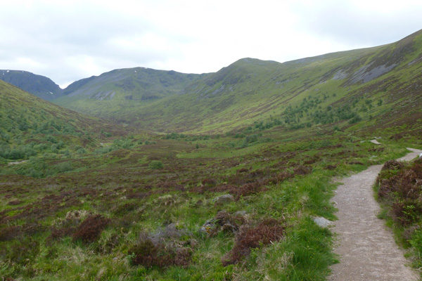 Walking through the glen with views of the Creag Meagaidh massif
