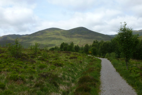 On the Alt Dubh Trail, Creag Meagaidh National Nature Reserve