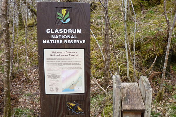 Information board and leaflet box, Glasdrum National Nature Reserve