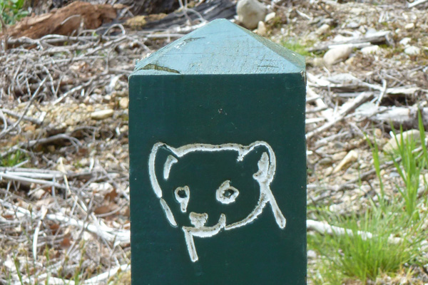 The signposts on route for the Pine Marten Trail