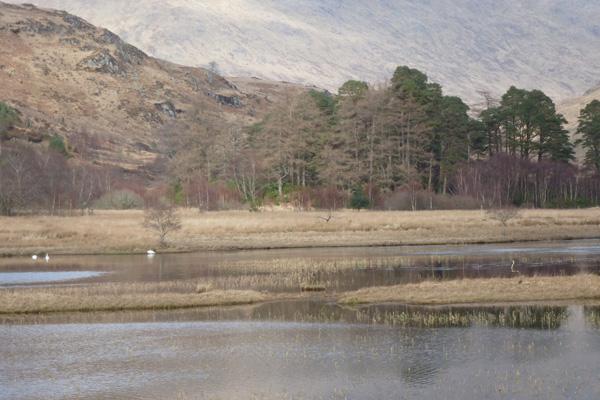 Loch nan Lochan in Glen Moidart