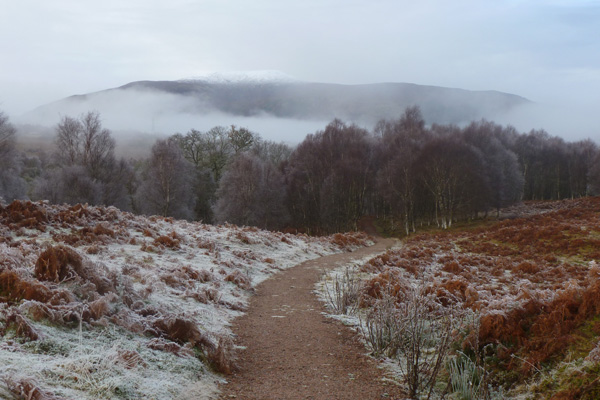 The path at the start of the walk heading to the River Spean