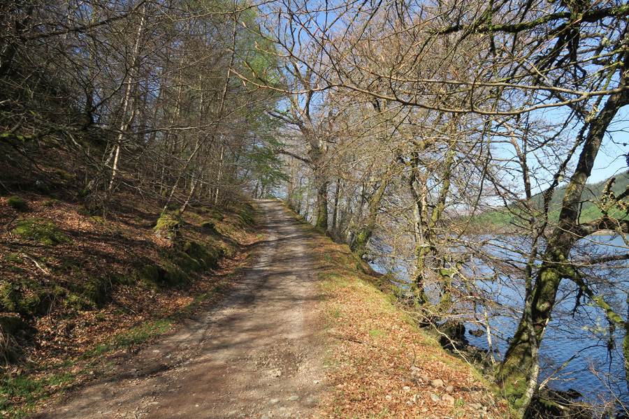 The track right along the southern shores of Loch Arkaig