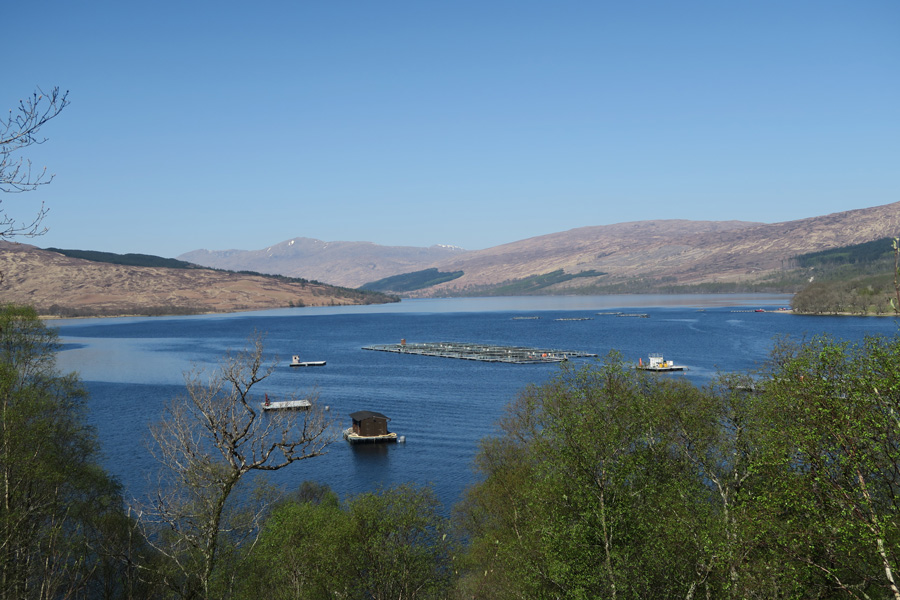 Fabulous views across Loch Arkaig