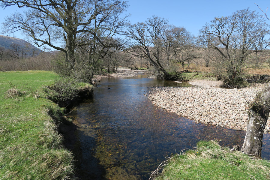 The River Mallie