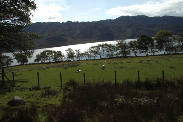 The start of the walk at Loch Morar