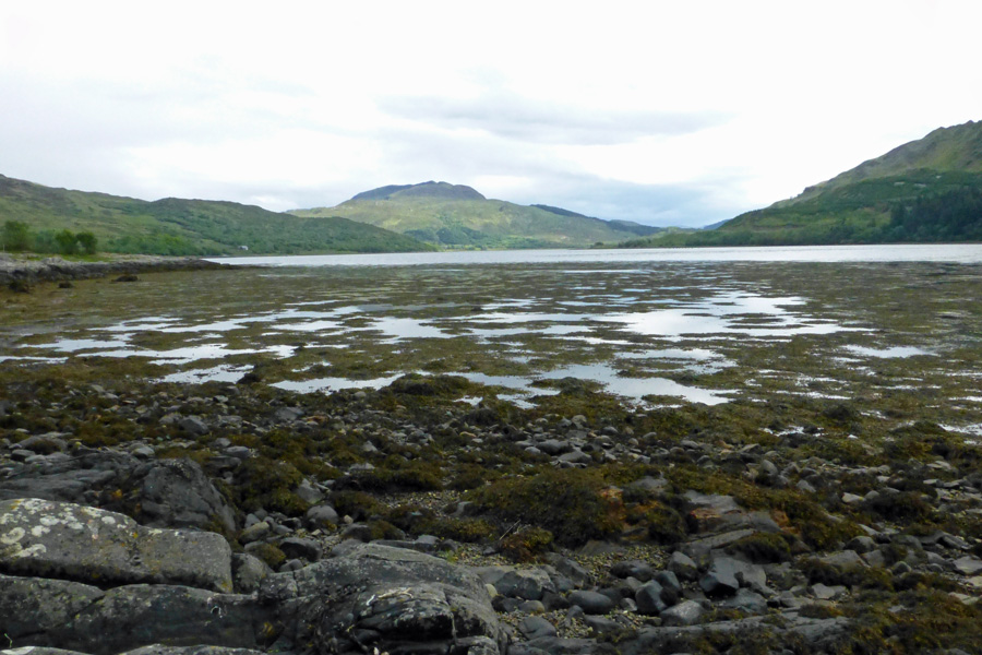 The shoreline of Loch Teacuis