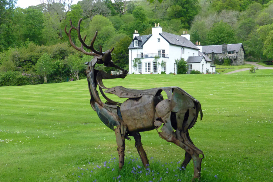 Look out for red deer in the grounds of Rahoy House