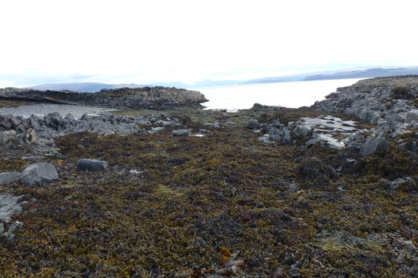 Rocky shoreline and shingle beach at low tide