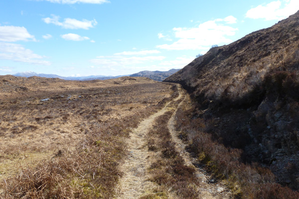 Path through heathland