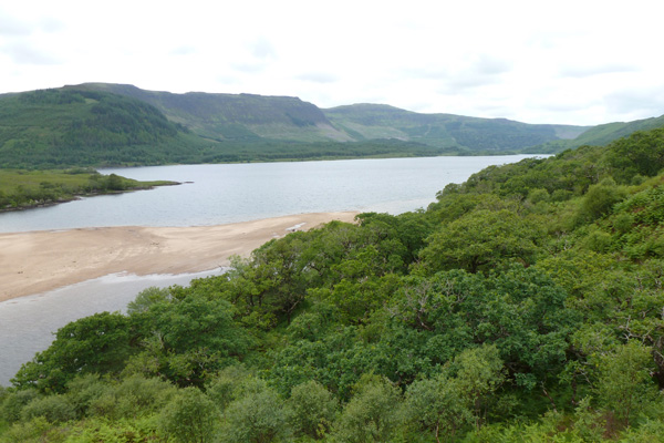 Looking over the woodland canopy to Loch Arienas