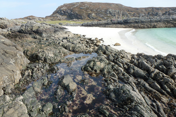Rockpools and beaches