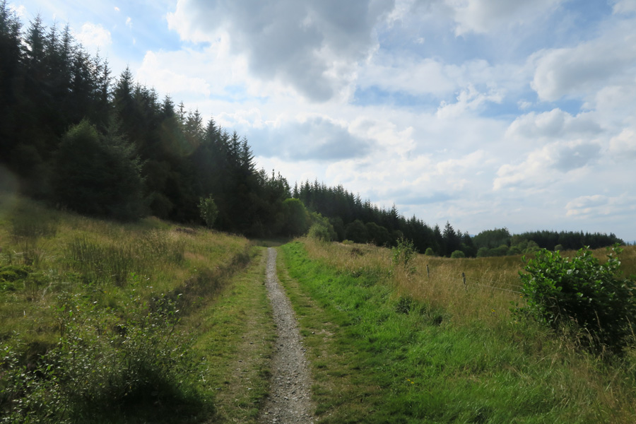 The path skirting the open meadows