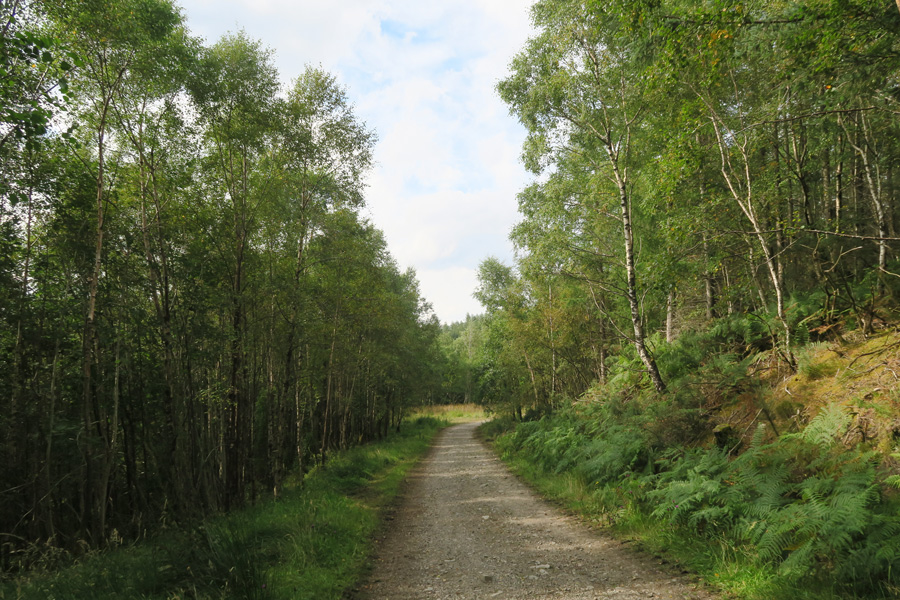 The River Lundy Trail