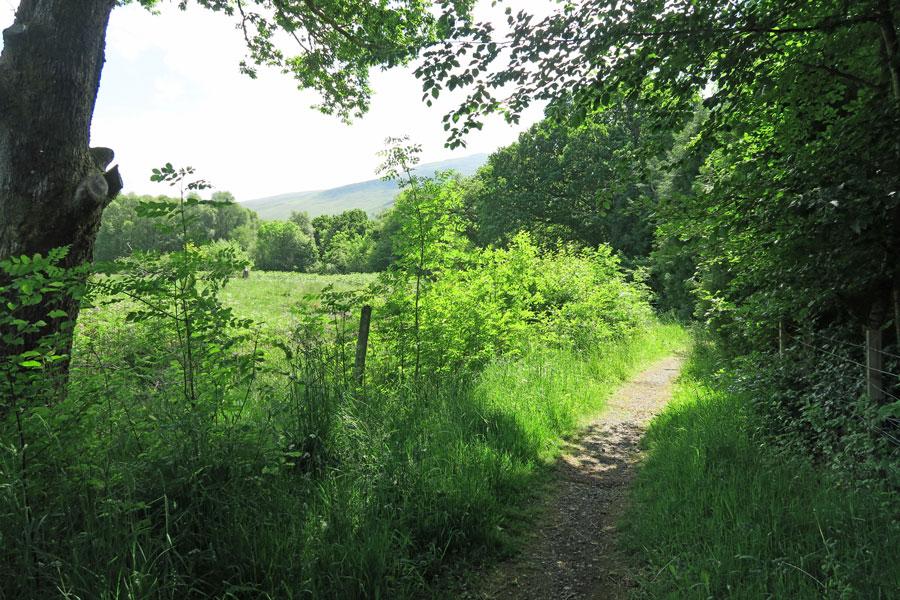 Follow the footpath