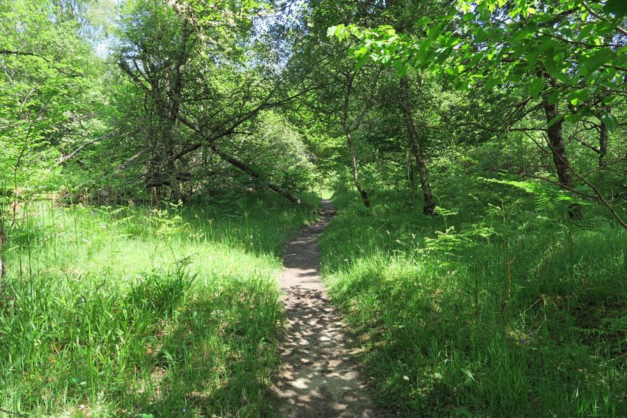 Keep to the path...