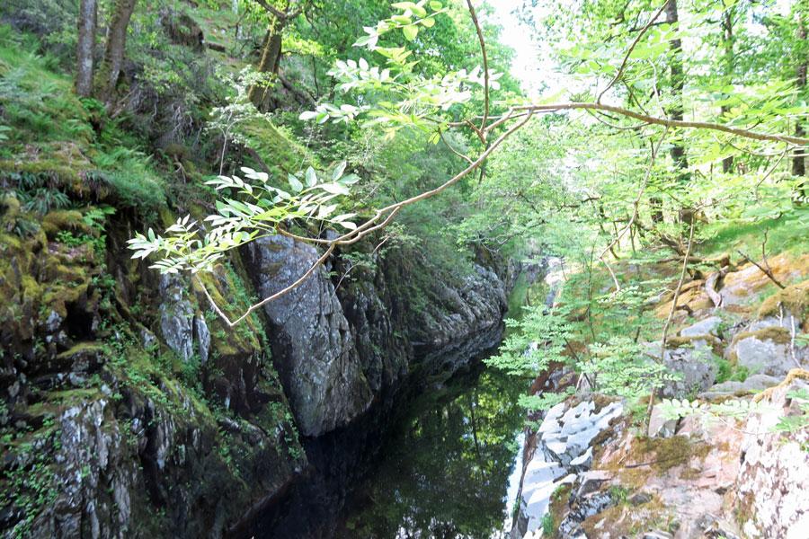 The narrow gorge